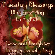 tuesday blessings - Google Search