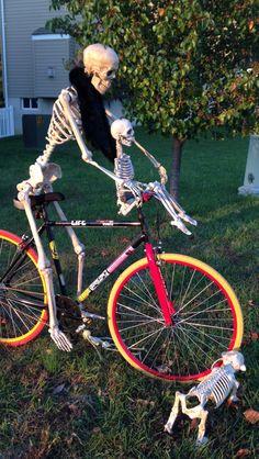 Bike ride Halloween Skull, Skulls, Bones, Waiting, Bicycle, Fun, Creative Decor, Bike, Bicycle Kick