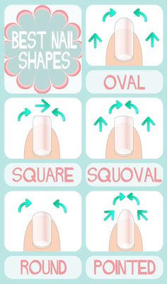 Nail Shapes, great to know for going into the cosmetology field