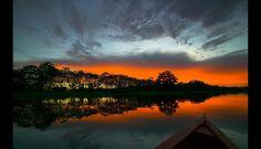 Prettyyyy!  Amazonas: Disfruta de las mejores imágenes en una gran aventura por la Selva (FOTOS)