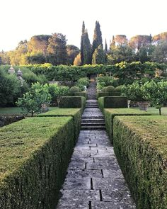 Tuscan garden with elegant green structure & topiary   luciano giubbilei on instagram