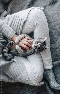 Cat cuddles | have a great Sunday!