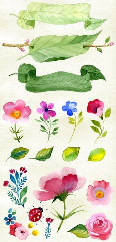 Watercolor flowers + patterns by Samira on @creativemarket                                                                                                                                                                                 More