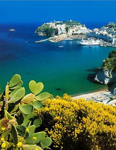 Ponza, province of Latina , Lazio. Our tips for 25 places to visit in Italy: http://www.europealacarte.co.uk/blog/2012/01/12/what-to-do-in-italy/