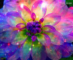 ✿ » ❥ ~♥ ... When the Heart Speaks , every Word is  Birth of a Flower ...    Wordz and arT; e11en vaman www.facebook.com/ellenvaman 1286