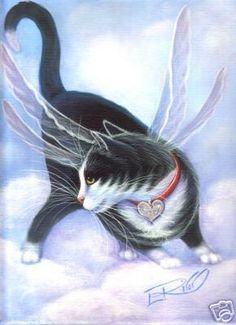Cloud Fairy Kitty By carefulwhatyawishfor.