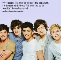 One direction facts, for you!