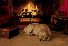 Check out some of PRIER's fireplace and winter warmth tips and tricks! #fireplace #winter #tipsandtricks
