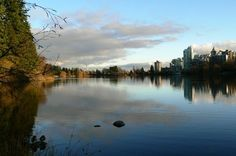 Beginning of Spring in Vancouver. Sent in by MyNews contributor Myer Holtzberg.  http://mynews.ctv.ca
