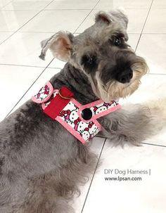 free PDF pattern provided. Make your furry friend a handmade harness.