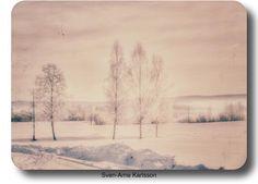 Lovely winter Sunday