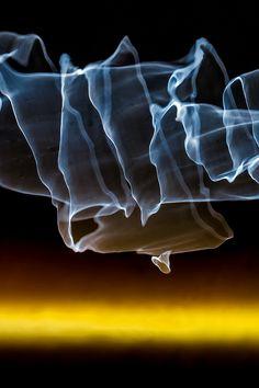 Reflection Abstract 347 by Craig Royal. #art #photography #water #interiordesign