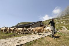 Piccole fattorie per sfamare la Terra in crisi | Slow Food - Buono, Pulito e Giusto.