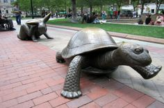 Boston - Copley Square: The Tortoise and the Hare