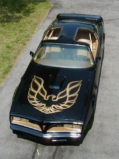 Bandit Edition Trans Am
