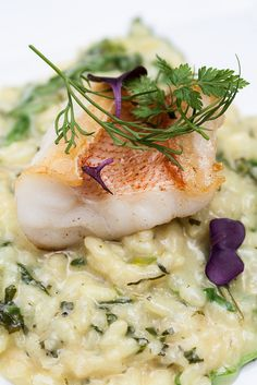 Fish of the Day with Lime Risotto.