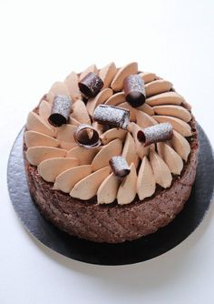 What I love about this chocolate charlotte! Chocolate Cake Designs, Chocolate Desserts, Charlotte Cake, French Desserts, Beautiful Desserts, Dessert Decoration, Bakery Cakes, French Pastries, Pastry Recipes