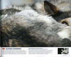 Olivier Comment et la TransAlp Vaudoise dans le dernier Nikon Pro magazine