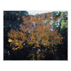 Autumn (poster)