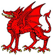 Stylised images of dragons appeared in heraldry to signify immense power and authority. The striking image and colours of the dragon itself is enough to establish dominance and strike fear into enemies.