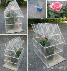 Cd Case Greenhouse | Beautiful DIY Greenhouses Ideas DIY Projects Craft Ideas & How To's for Home Decor with Videos