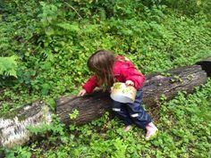 10 woodland activities for kids