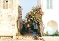 Sezane x CSAO - Gorée mon amour  www.sezane.com  #sezane #csao #goree…