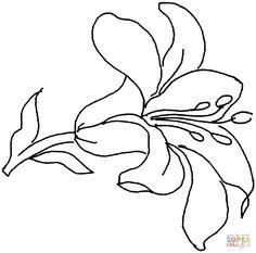 Resultado de imagen para dibujos de flores DE CALAS para