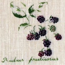 marie-therese saint-aubin love the little blackberries! Cross Stitch Fruit, Cross Stitch Kitchen, Cross Stitch Flowers, Cross Stitching, Cross Stitch Embroidery, Embroidery Patterns, Hand Embroidery, Cross Stitch Designs, Cross Stitch Patterns