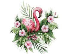 FLAMINGO MURAL, watercolor flamingo mural art wall, flamingo with tropical flowers wall mural, flamingo wallpaper mural, floral wall mural Mural Floral, Floral Wall, Flamingo Png, Watercolor Flowers, Watercolor Paintings, Hawaiian Party Decorations, Flamingo Wallpaper, Flamingo Painting, Office Wallpaper