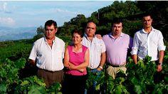 Viñademoya Leiros 2007 es elegido el nejor vino español en Terravino | SoyRural.es