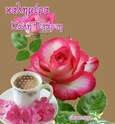 Greek Quotes, Good Morning, Rose, Flowers, Plants, Google, Good Night, Buen Dia, Pink