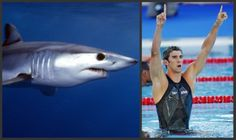 Sharkskin-inspired swimsuits received a lot of media attention during the 2008 Summer Olympics when the spotlight was shining on Michael Phelps. Stem Projects For Kids, Stem For Kids, Biomimicry Examples, Middle School Activities, Animal Adaptations, Michael Phelps, Project Based Learning, Summer Olympics, Historical Photos