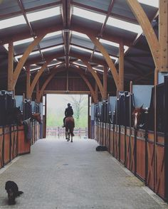 The most important role of equestrian clothing is for security Although horses can be trained they can be unforeseeable when provoked. Riders are susceptible while riding and handling horses, espec… Equestrian Stables, Horse Stables, Horse Barns, Dream Stables, Dream Barn, Horse Barn Designs, Horse Barn Plans, Horse Property, Horse Ranch