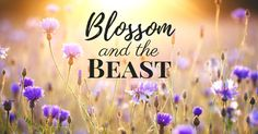 BOOK REVIEW: Blossom & The Beast by Author RS McCoy
