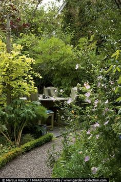 sheltered retreat| love little seating places in garden like this, take a seat and enjoy