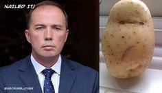 Nailed it. #qt #auspol