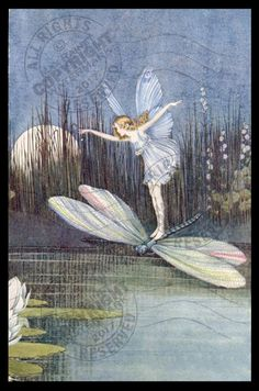 Vintage Fairy Butterfly rides Dragonfly over Lily Pond at Night = POSTER = PRINT | eBay dragonfly #fairy #fairies #pond #weeds #art #artprint #wallart #picture #homedecor #fantasy #ridingMistress