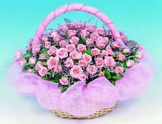 Like & Share