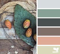prickly pear palette | design seeds | Bloglovin