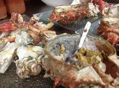 El sabor de la Centola de la Ría del restaurante tapería A Lareira dos Amigos en Vigo. Su cocina, te espera en https://www.quetecomo.es/Vigo-taperia-A-Lareira-dos-Amigos-subida-a-san-lorenzo-4-coruxo.php