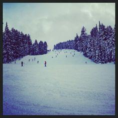 Bansko Ski Zone