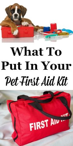 If you're a pet owner you should be prepared for minor medical emergencies your pets may have. Here is what to put in your pet first aid kit today. #ad