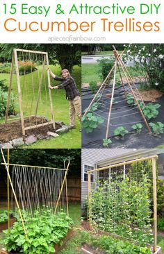 15 easy attractive DIY cucumber trellis ideas on how to build vertical garden growing structures with simple materials for productive vegetable gardening! - A Piece of Rainbow backyard, landscaping, gardening tips, homesteading grow your own food Veg Garden, Vegetable Garden Design, Edible Garden, Vegetable Gardening, Vertical Garden Vegetables, Garden Shrubs, Indoor Garden, Diy Vertical Garden, Vertical Gardens