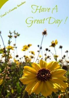 Have a great day! via Carol's Country Sunshine on Facebook