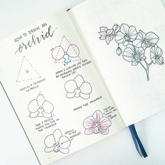 It's #FlowerFriday.. how to draw an orchid! On the left are the individual steps, and on the right I was playing around with drawing a whole branch. I LOVE seeing your drawings, so keep tagging me and/or using the hashtag #bonjournal ☺ . . GO CHECK OUT ANOTHER AMAZING TUTORIAL BY @inkbyjeng !!!
