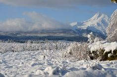 The morning after what just might be the last big storm of Winter 2011-12 in the Hood River Valley.  Should be great spring snow adventures!  What are you doing for spring break? photo by @Mary Pellegrini