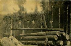 Loggers. Ca. 1900