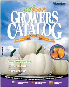 NE Seed offers conventional, organic, heirloom and cutting edge hybrid seeds for commercial growers and home gardeners. A NO-GMO Seed Company. Plant Catalogs, Seed Catalogs, Herb Seeds, Garden Seeds, Catalog Cover, Free Plants, Organic Seeds, Commercial, Gardens