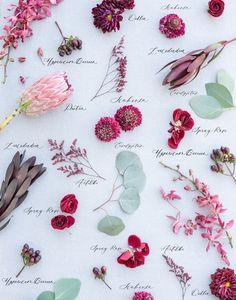 Wedding Bouquets, Wedding Flowers, Project Board, Wedding Season, Flower Power, Bride, Wallpaper, Phone, Plants